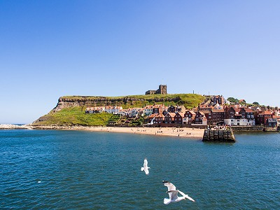 Whitby's East Cliff